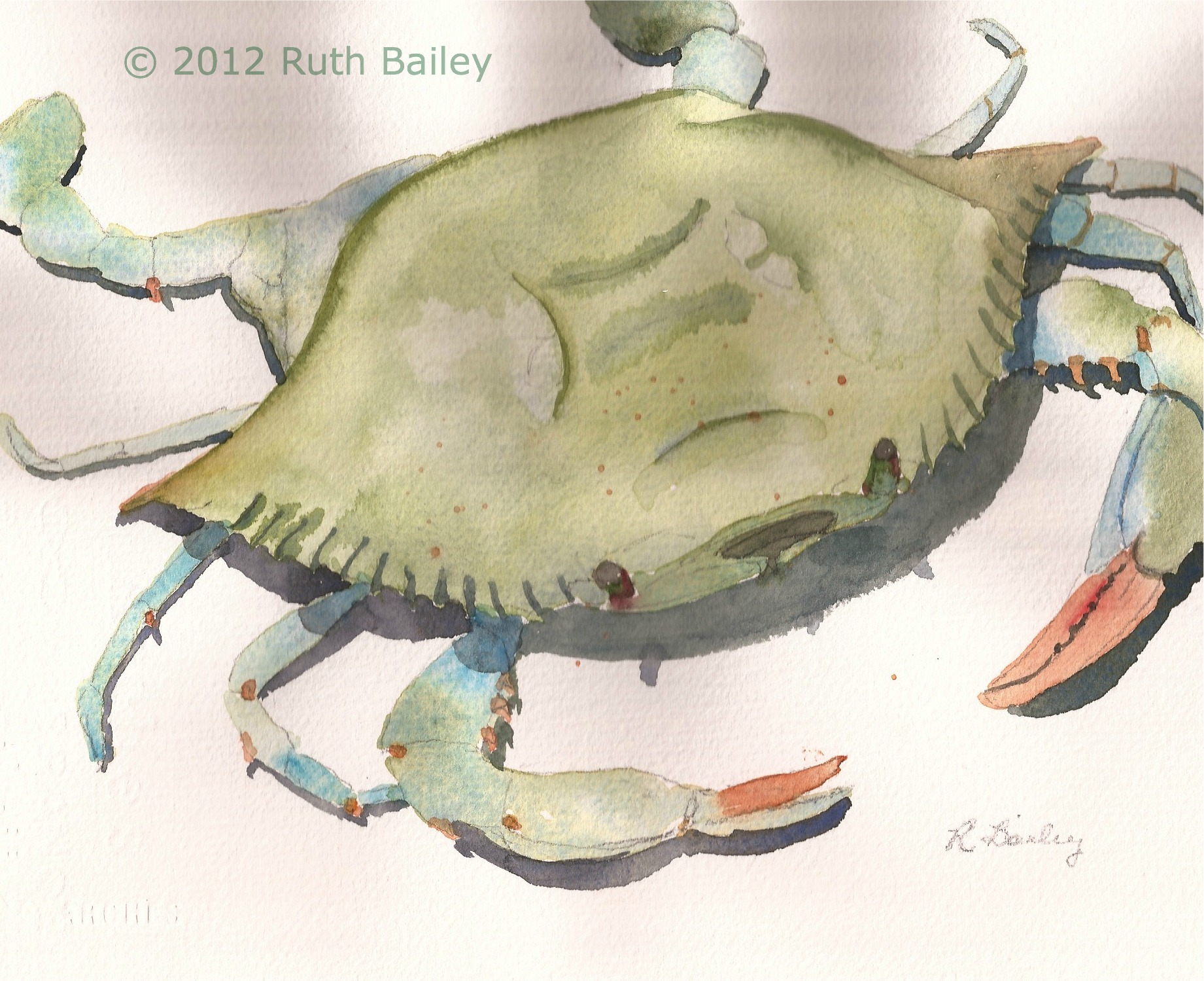 June 2012 – Ruth Bailey, artist