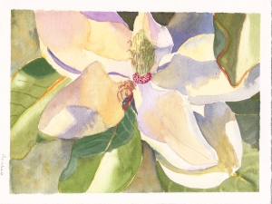 "First attempt at painting a Magnolia flower, watercolor, 5"" x 7"""