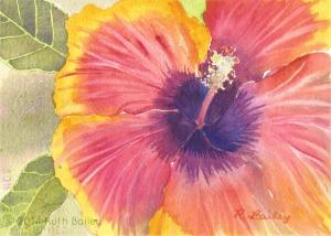 """Hibiscus, watercolor, 5"""" x 7"""""""