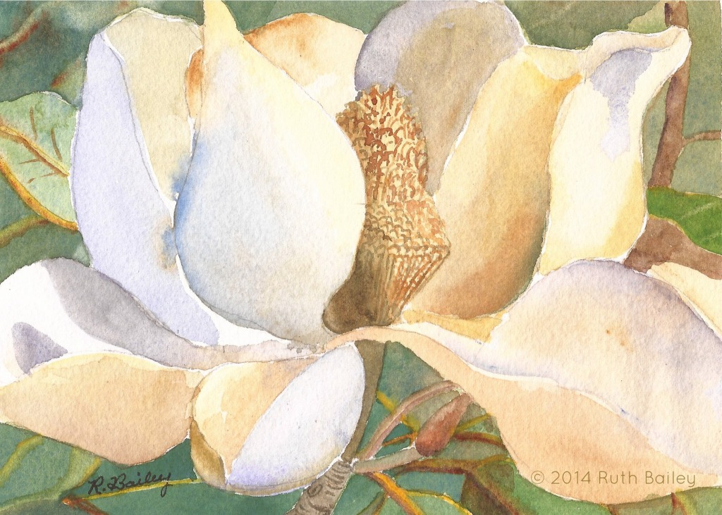 "Magnolia Blossom, watercolor, 5"" x 7"""