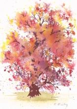"Autumn Red Oak, watercolor, 7"" x 5"""