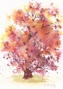 Autumn Red Oak, watercolor, 7