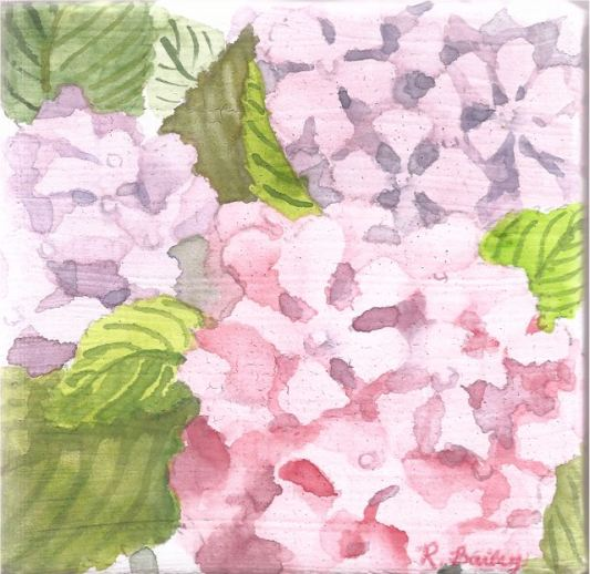 "Hydrangea for Josie's Mother, watercolor on canvas, 4"" x 4"""
