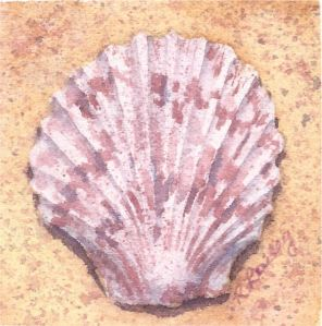 "Scallop in the Sand, watercolor, 3"" x 3"""