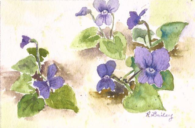 Spring Means Violets