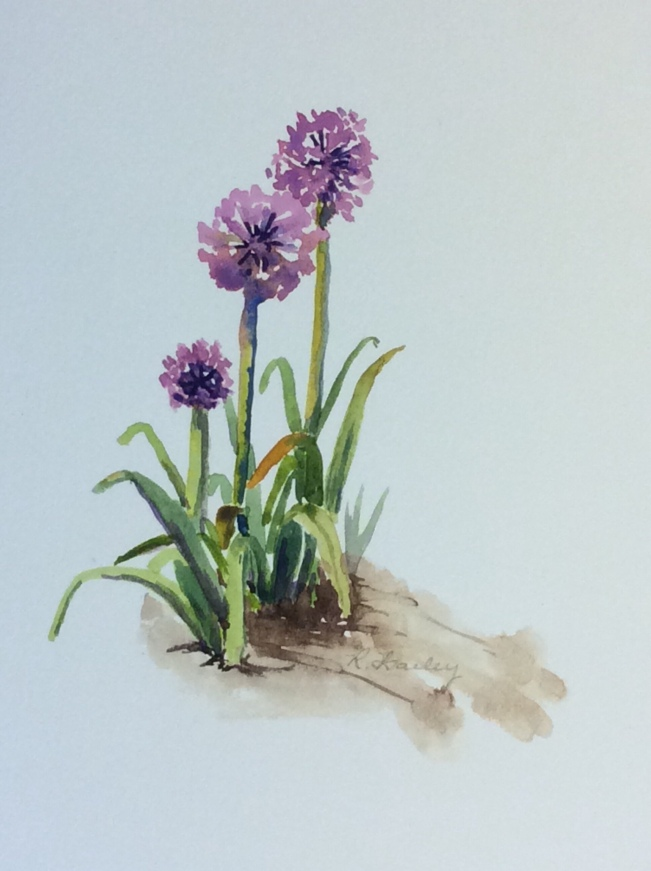 "Purple Allium, watercolor, 7"" x 5"""